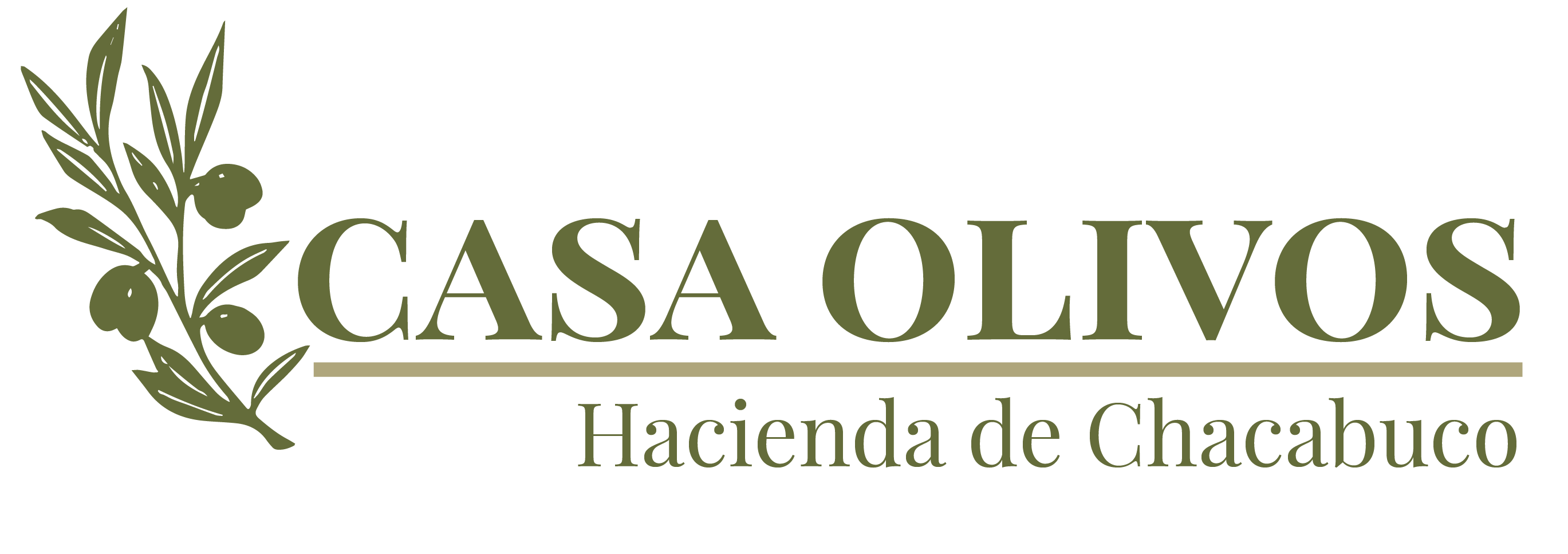 Casa Olivos